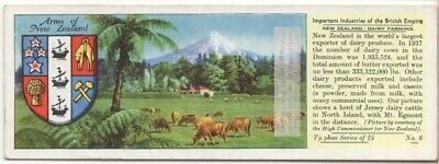 Dairy Farming In New Zealand Milk Butter Cow c80 Y/O Trade Ad Card