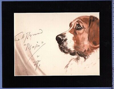 DIANA THORNE ~ ST. SAINT BERNARD ~ ANTIQUE DOG PRINT 1930/40s Mounted #2