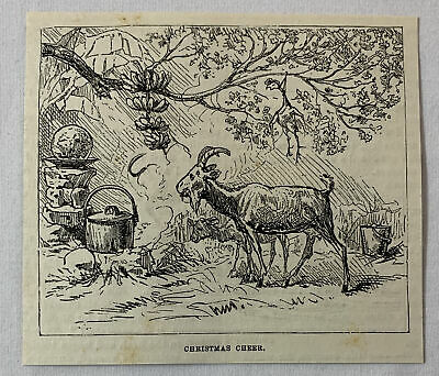 1885 magazine engraving~ CHRISTMAS CHEER In Africa ~ goat by the fire