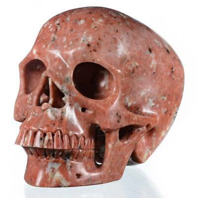 "7.05"" Natural Sesame Red Jasper Crystal Human Skull Collectibles #30A51"