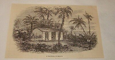1879 magazine engraving ~ A HACIENDA IN MEXICO