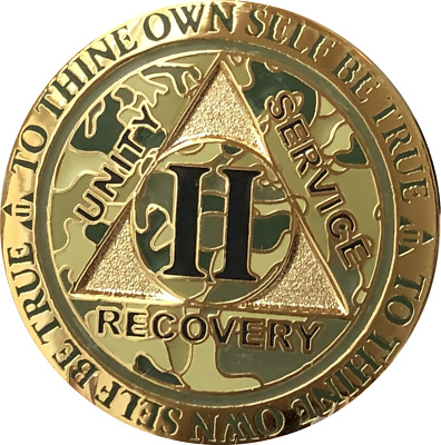 2 Year AA Medallion Reflex Camo Gold Plated Sobriety Chip Camouflage Coin II