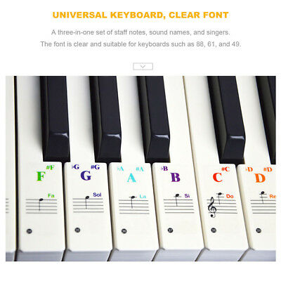 TRANSPARENT Keyboard Piano Stickers 49/61/76/88 KEYS Sticker Note For Learner