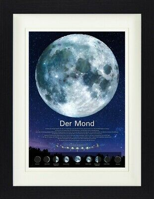 PHASES OF THE MOON SUPERB SCIENTIFIC CELESTIAL CANVAS PRINT PICTURE ArtWilliams