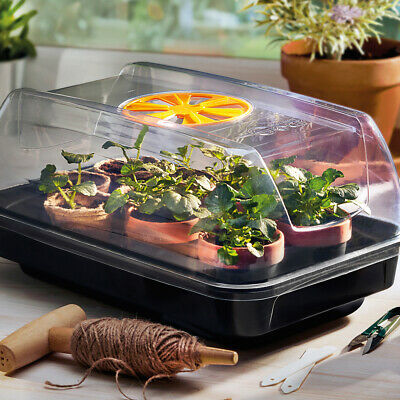 Heated Electric Plants Propagator with Air Valve for Plants 39 x 25 x 20cm T&M