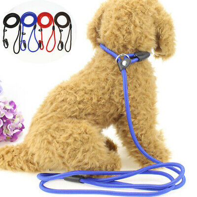Binding Strong Nylon Slip On Rope Dog Puppy Pet Lead Leash- No Collar Needed HP