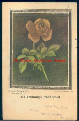 Colorchange Postcard, Flower Rose, Columbia MO Postmark, H.C.J. Deeks & Co