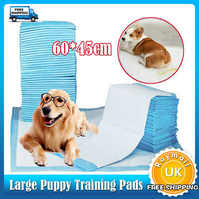 50 100 150 200 400 600xLARGE PUPPY TRAINING PADS TOILET PEE WEE MATS PET DOG CAT