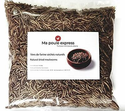 1 Lb Hen Express Dried Mealworms for Wild Birds etc. Approx. 16,000 Mealworm