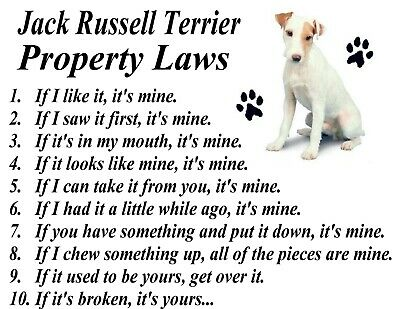 Property protected by Jack Russell Terrier dog breed with attitude metal sign #B