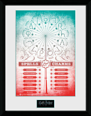 Harry Potter Spells & Charms Collector Print