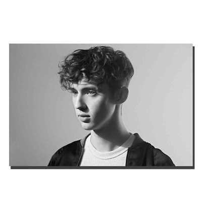 H714 Troye Sivan Bloom Pop Rap Music Singer Star Album Cover Poster Art Decor