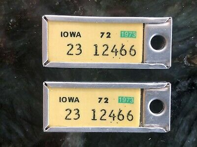 1973 MATCHED PAIR Iowa DAV Tag Keychain License Plates 23 12466