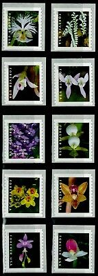 US 2020 Stamps Wild Orchids MNH,(10) Singles From 3K Coil