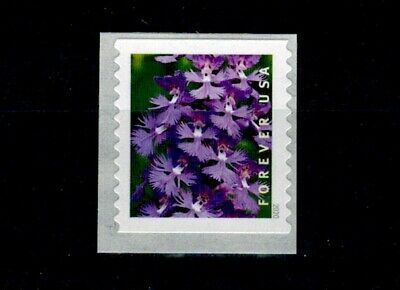 US 2020 Wild Orchids Single Stamp MNH From 3K Coil, Platanthera Grandiflora