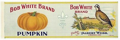 BOB WHITE Vintage Maryland Pumpkin Can Label, AN ORIGINAL 1910's TIN CAN LABEL
