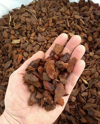 * ORCHID PINE BARK * Chips Pine Bark Reptile Vivarium Substrate ** FREE DELIVERY