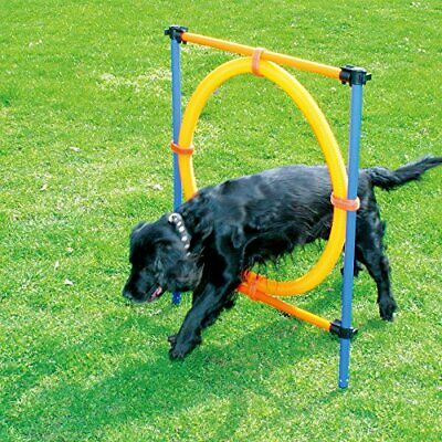 Pet Dogs Outdoor Games Agility Exercise Training Equipment Jumping Ring Agility
