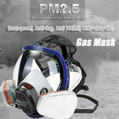 Full Face Respirator Filter Paint Goggles Chemical Pesticide  Dustproof Gas Mask