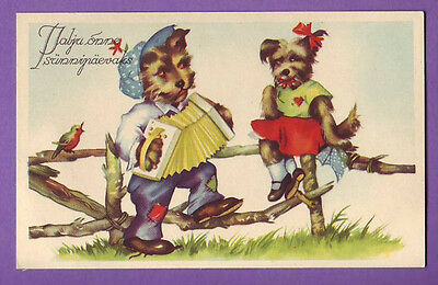 ESTONIA Dogs in the Clothes playing the accordion VINTAGE POSTCARD 1133
