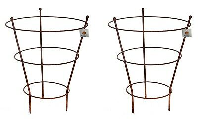 Rust Peony Herbaceous Plant Supports Metal Cage Steel Garden Large Ring Set of 2