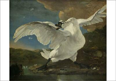 12813645 A1 (84x59cm) Poster of The Threatened Swan, c.1650 (oil on canvas)