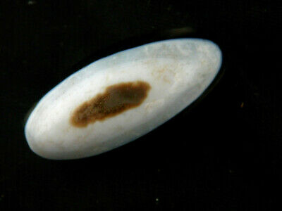 Excellent Pure Tibetan Natural Agate Dzi *White Sky Eyed* Bead B118