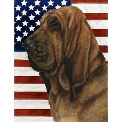 Patriotic (D2) House Flag - Bloodhound 32073