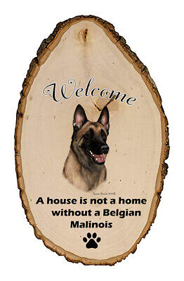 Outdoor Welcome Sign (TB) - Belgian Malinois 51251