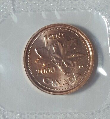 2000W Canada 1 Cent Winnipeg Proof-Like Penny Coin