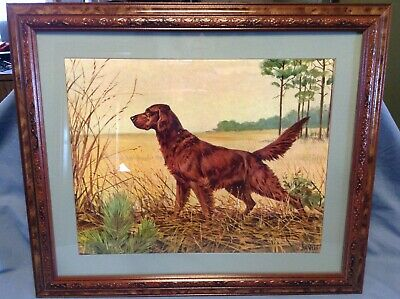 Framed Savitt Irish Setter On Point Litho 11x14 Picture Lithograph Matted