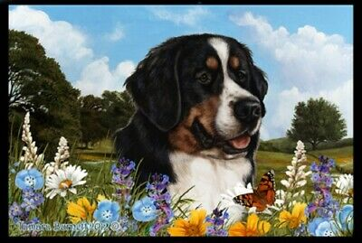 Summer Floor Mat - Bernese Mountain Dog 39051