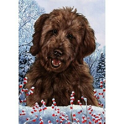 Winter House Flag - Chocolate Goldendoodle  15269