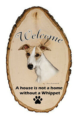 Outdoor Welcome Sign (TB) - Fawn and White Whippet 51441