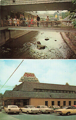 Postcard Ogle's Buffet Restaurant Gatlinburg Tennessee