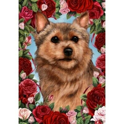 Roses House Flag - Norwich Terrier 19152
