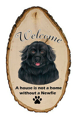 Outdoor Welcome Sign (TP) - Newfoundland 94079