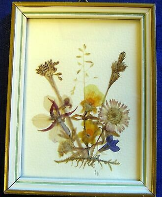Pressed Dried Flower Art Arrangement - Framed - Made in East Germany #1