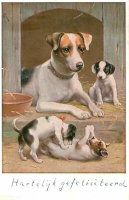 Rare Old Dog Postcard Smooth Fox Terrier Mom & Puppies Netherlands 1946