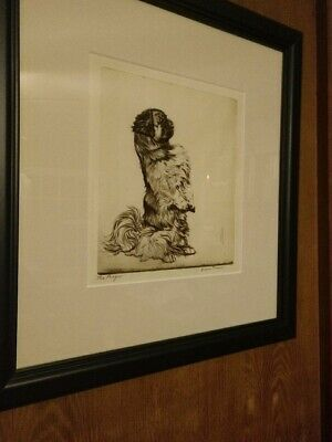 Pencil Signed Etching of a Pekingese Dog by Diana Thorne, c.1930s