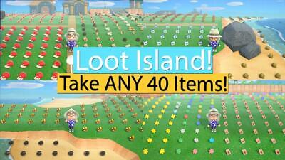 ON SALE NOW Animal Crossing New Horizons Loot Treasure Island! All you can carry
