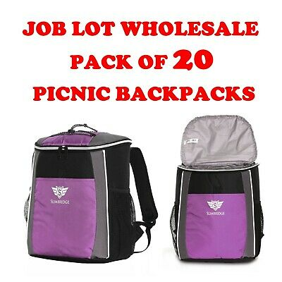Job Lot Wholesale 20 Fully Insulated Camping School Picnic Backpacks Cooler Bags