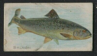 1889 Allen & Ginter Cigarette Cards N2- 50 Fish From American Waters Salmon