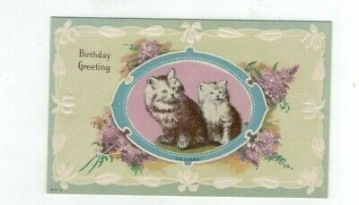 "Antique embossed Cat Kitten post card ""Birthday Greeting"""