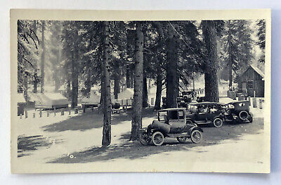 Early Forest Image with OLD CARS RPPC Real Photo Postcard;I468