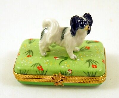New  French Limoges Box Cute Papillon Dog Puppy On Grass With Flowers