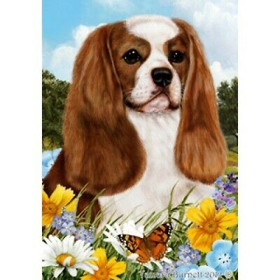 Summer House Flag - Blenheim Cavalier King Charles Spaniel 18055
