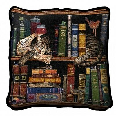 "17"" x 17"" Pillow Cover - Max in the Stacks 2876"