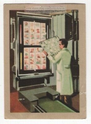 1950s Large Photogravure Color Printing Press Vintage Trade Ad Card