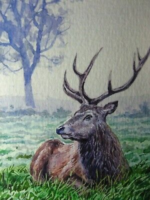 watercolor painting landscape deer forest tree nature aceo art auction 45 00 picclick picclick